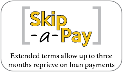 Skip-A-Pay Information